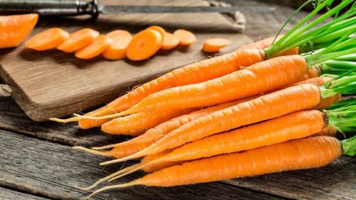 15 сортов моркови для свежего употребления и хранения