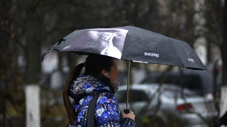 Жителей Подмосковья предупредили о дожде, грозе и сильном ветре