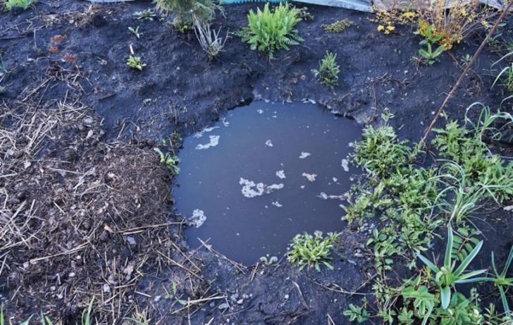 Эта глубокая яма (метр в диаметре и глубиной около метра) помогла спасти от гибели растения в миксбордере. © Людмила Светлицкая