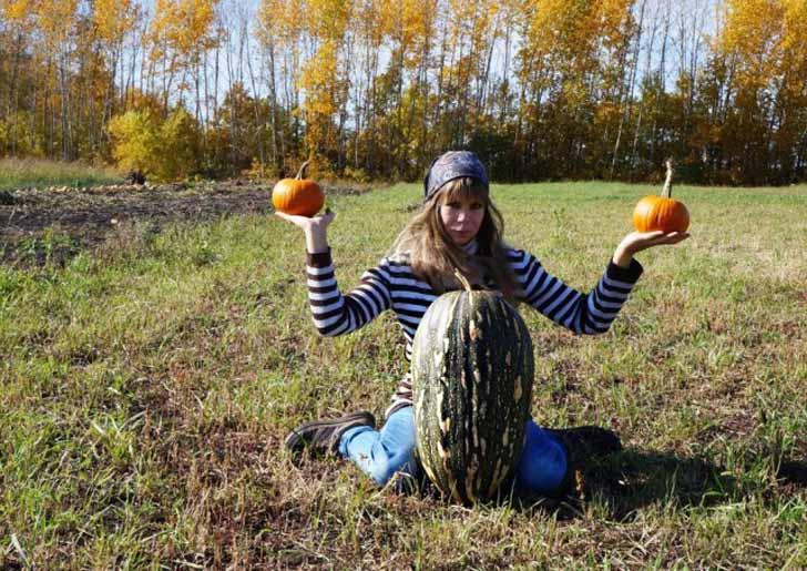 По иронии судьбы нам так и не удалось попробовать этот гигантский плод тыквы «Чудо-Юдо». © Людмила Светлицкая