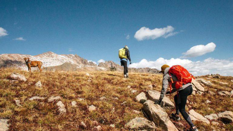 Роспотребнадзор дал советы по безопасному отдыху на природе