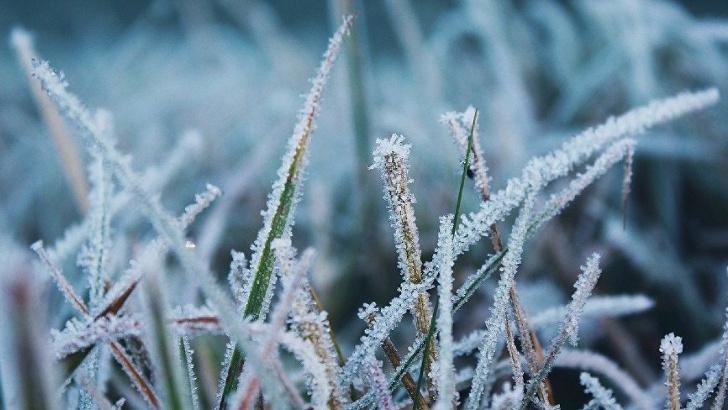 ФГБУ «Гидрометцентр России» предупреждает о возможных заморозках