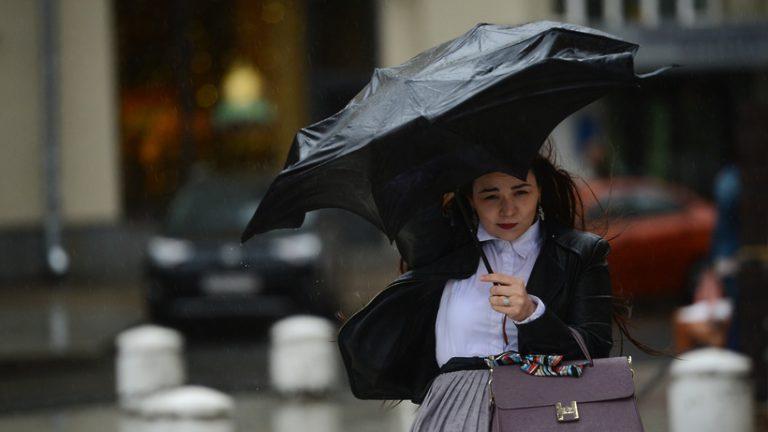 Сильный порывистый ветер в Московском регионе помешал прогреву воздуха