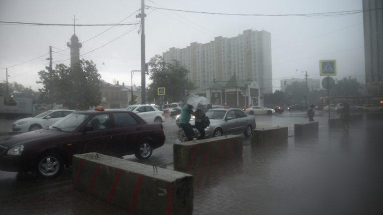 МЧС предупредило москвичей о грозе и порывистом ветре в среду (8 мая 2019 года)