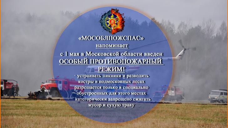 В Подмосковье с 1 мая 2019 года введен особый противопожарный режим