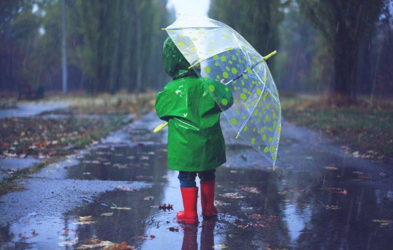 В Клину будет тепло и дождливо