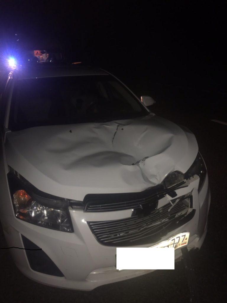 Уголовного дела по гибели клинчанки на трассе А-108 скорее всего не будет