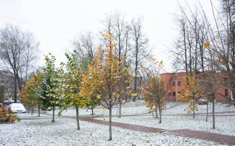 Точный прогноз погоды в Москве и Московской области