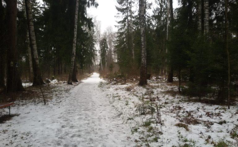 Точный прогноз погоды в Москве и в Подмосковье