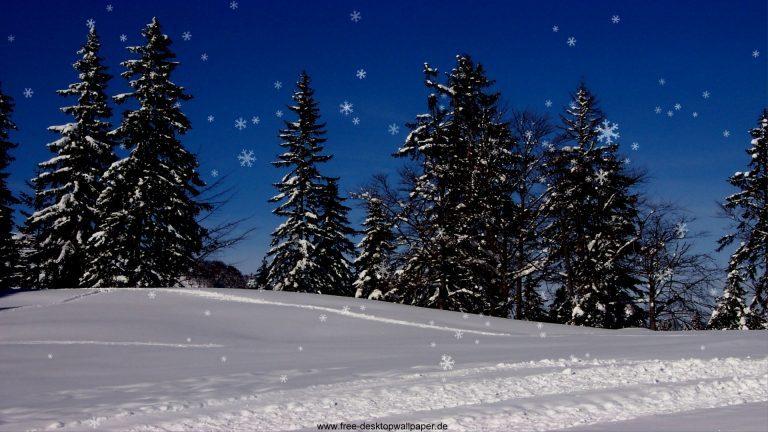 В Подмосковье придёт настоящая зима