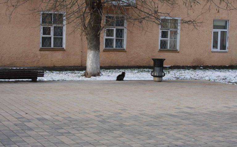 Точный прогноз погоды по Москве и Московской области на 1 апреля