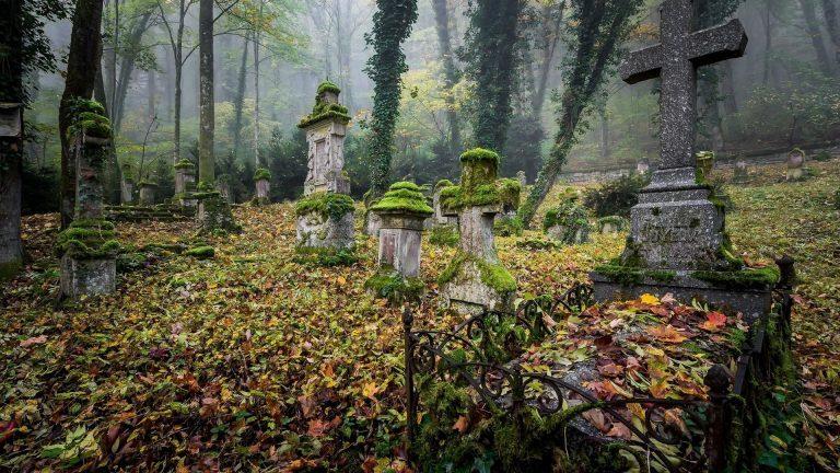Снят запрет на посещение кладбищ в Подмосковье
