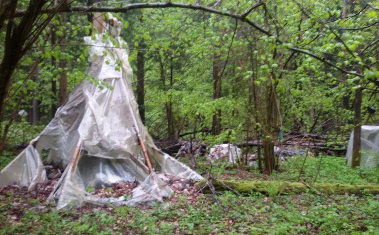 Лесной лагерь бомжей обнаружен в двух километрах от Клина