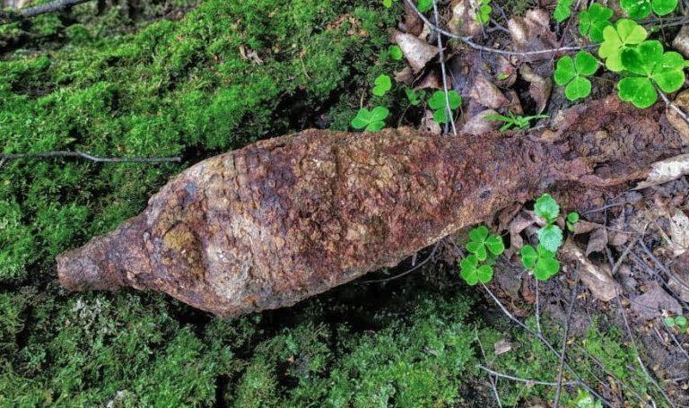 Грибники в Солнечногорске нашли мины