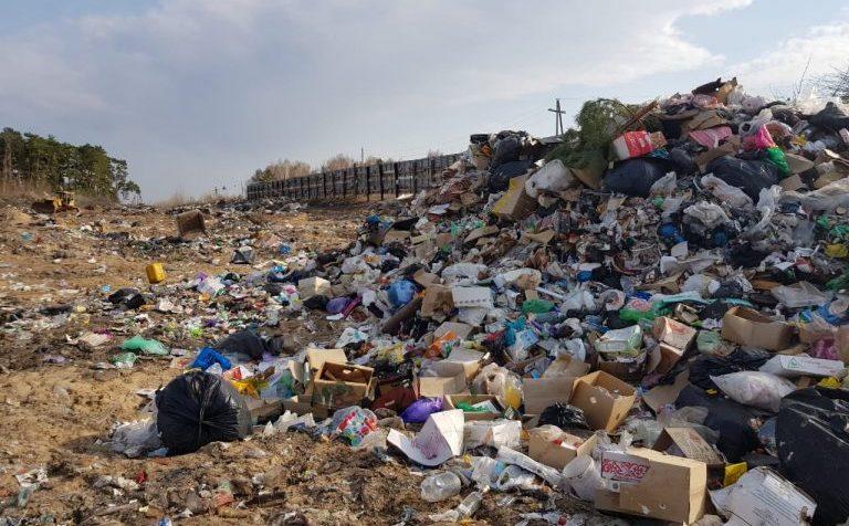 Счётная палата подсчитала вес мусора на одного россиянина