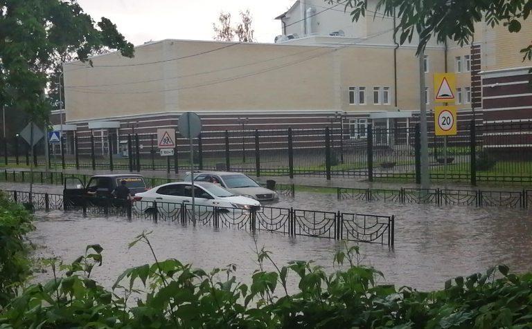 Коронный потоп или беда не приходит одна