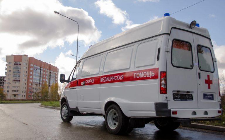 Причиной гибели в г.о. Клин Московской области девочки-наездницы стал испуг мерина