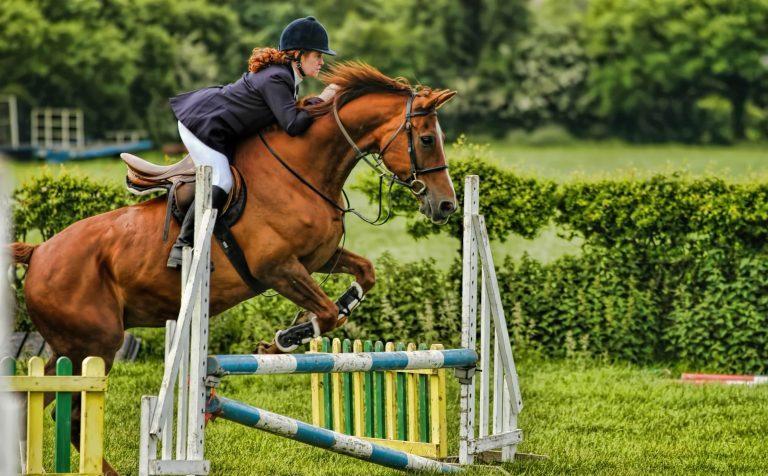 В Клину в финале Открытого Кубка по конному спорту участвовало 32 спортсмена