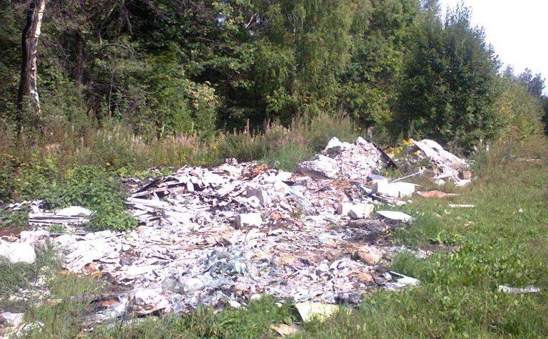 Солнечногорск: в четверг проведён субботник по уборке свалок в лесу