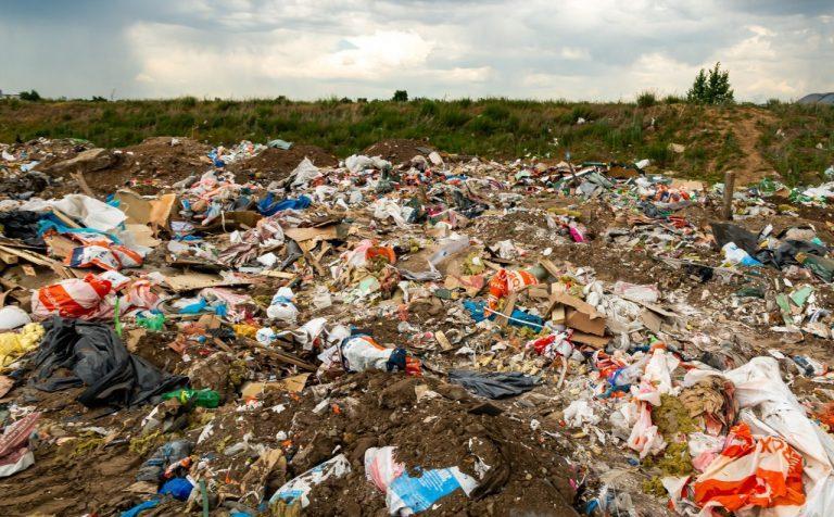 Организаторы незаконной свалки в Солнечногорске возместят ущерб в 3 миллиона