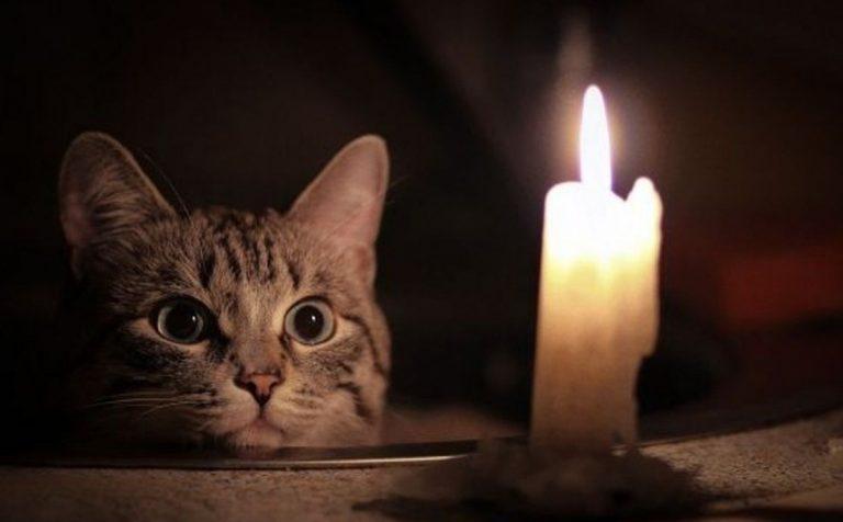 Солнечногорск: плановое отключение электроэнергии на 22 октября