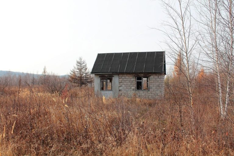 В Московской области упал спрос на аренду дач