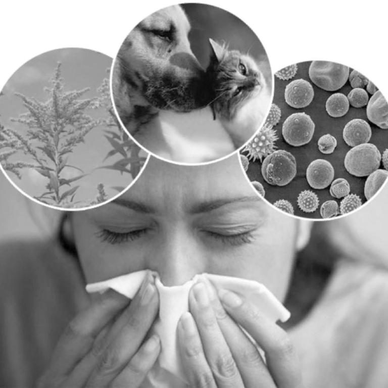 Пыльца противная: начался период весенней аллергии