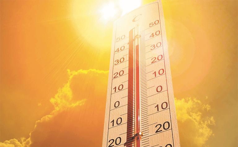Как пережить жару и что делать, если хочется закрыться в холодильнике?